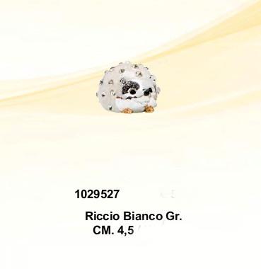 CBR1029527